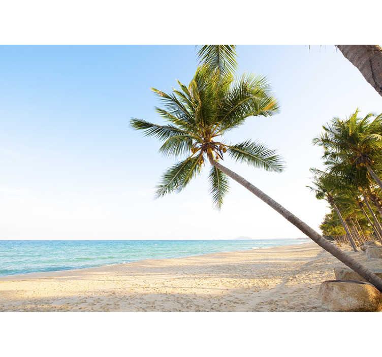 photo murale paysage palmier et plage paradisiaque
