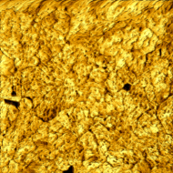 Gold. Height image. 1000 nm, 50 mV, 1 nA, 1Hz line rate.