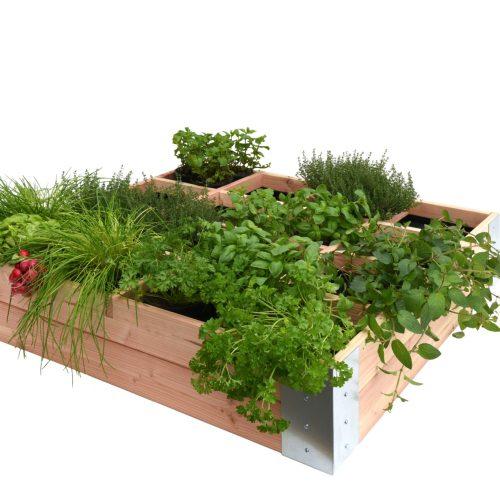 36005-Basic-douglas-minigarden-vierkante-meter-minigardens