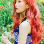 Joy Red Summer