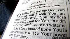 Bible Picture of Psalm 63