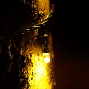 tree-light-63m