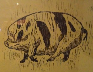 """Pig"" by Carolyn Graham"