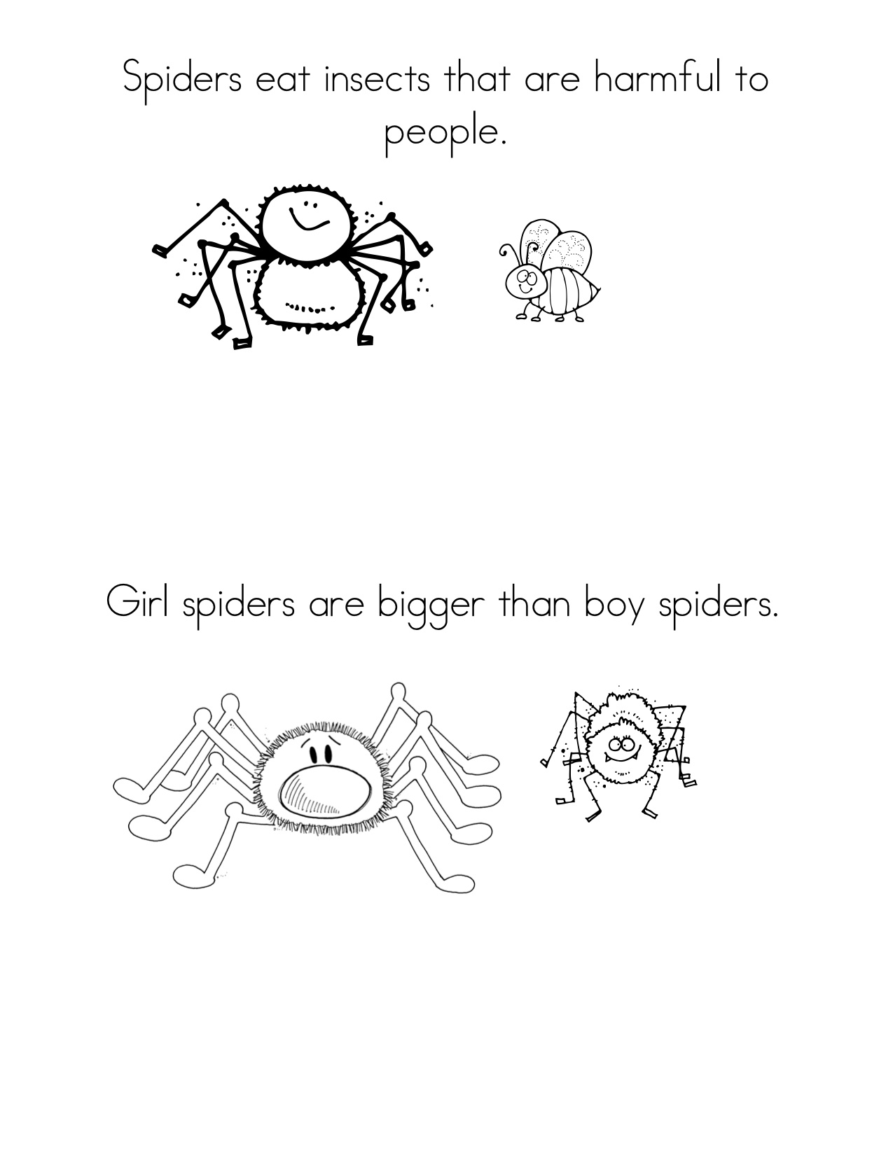 Bugs And Insects