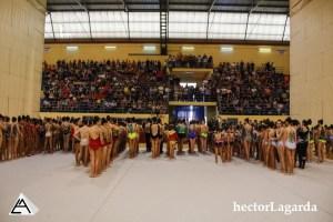 _P2A2745 Provincial Nacional Base y Copa Base. Riba-roja 2017