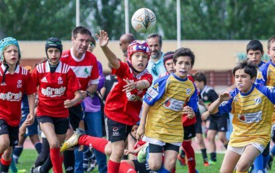 Torneo Melé de rugby base