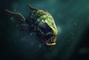 Scary fish 3d render
