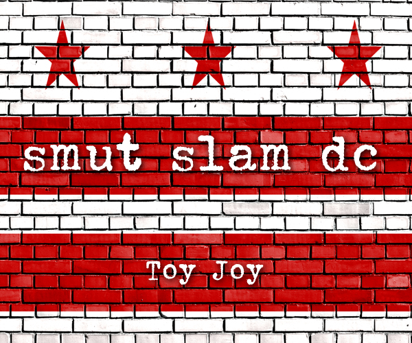 Smut Slam DC, December 2017: Toy Joy