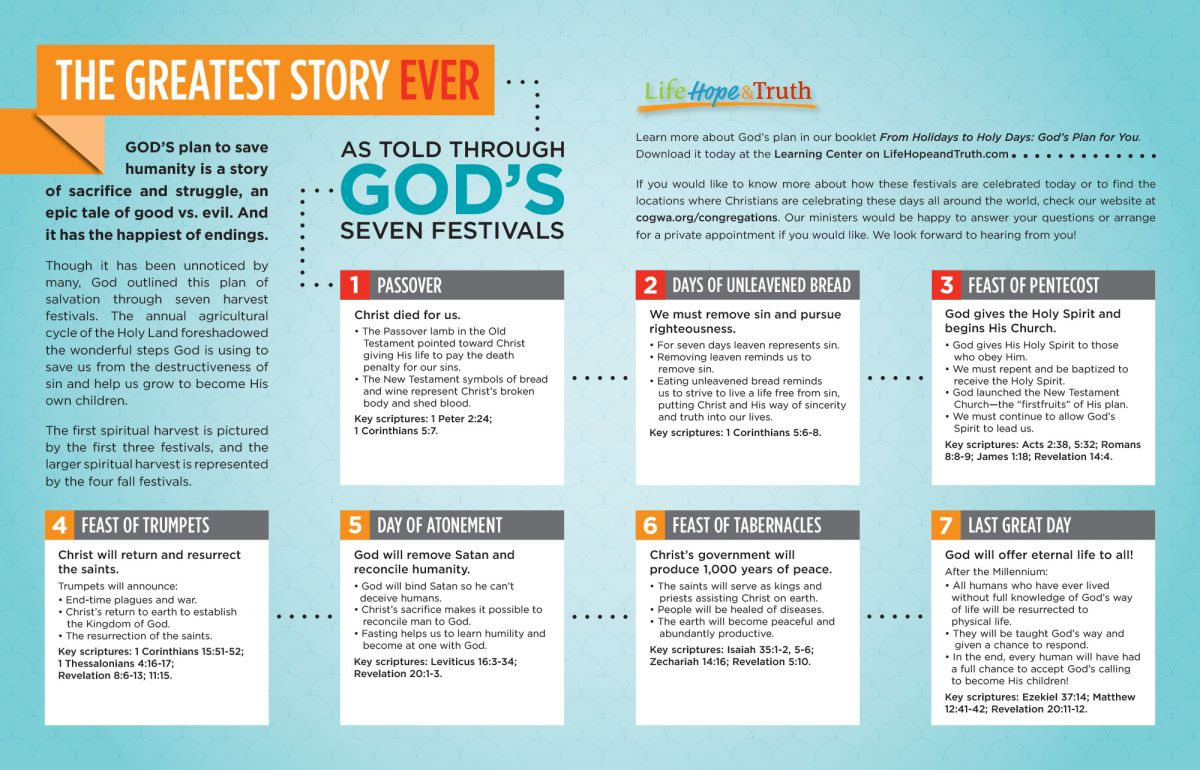 The Greatest Story Ever Infographic