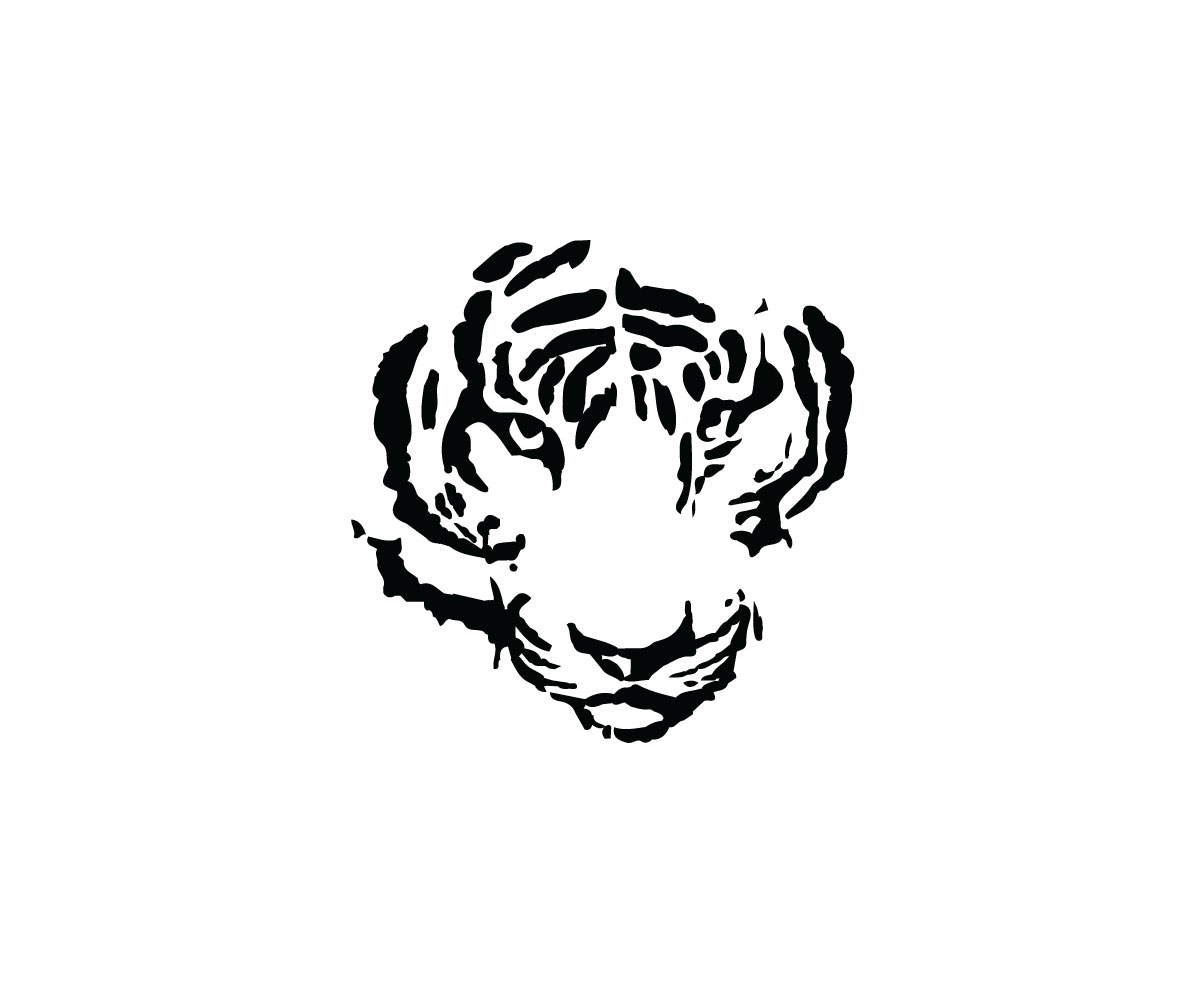 Internet Graphic Design For Tiger Correctional Services By