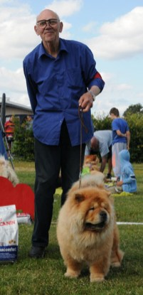 Rød Chow Chow veteran MATTES QONZUELA på sommerskuet 2015
