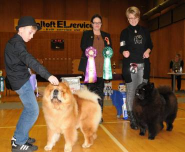 DCCK Juleskue BIR CHAN-LO´S FROM ME TO YOU og BIM Champion