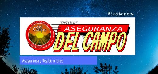 Del Campo Insurance