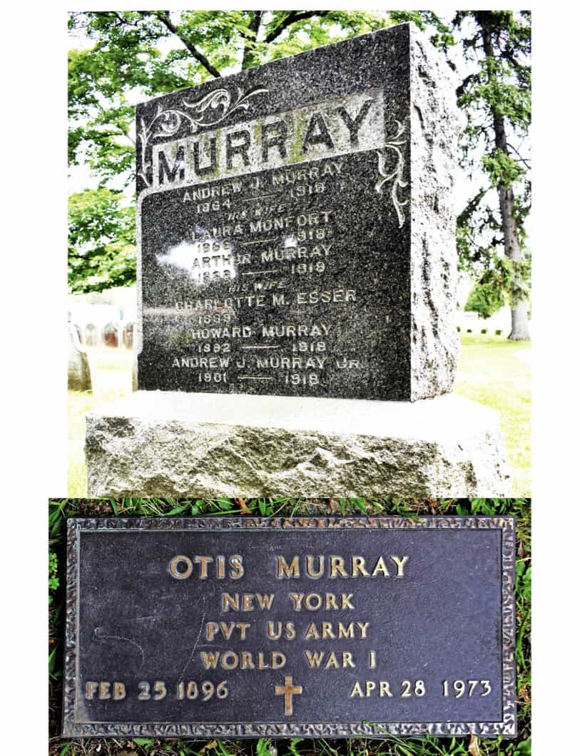 Murray Flu War 1918 copy