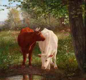 Two Cows at Wappinger Creek. DCHS Collections.