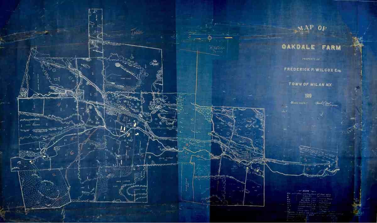 Wilcox Oakdale 1919