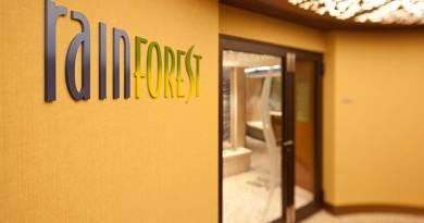 Disney Cruise Line Shares Rainforest Room at Senses Spa & Salon Updates