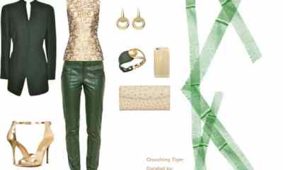 Crouching Tiger polyvore collage by DC Life magazine