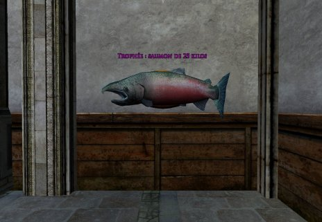 Trophée : Saumon de 25 kilos
