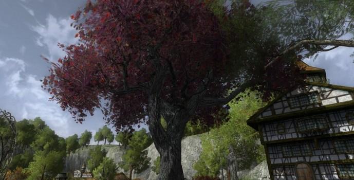 Sous un arbre plus que centenaire vivait un elfe