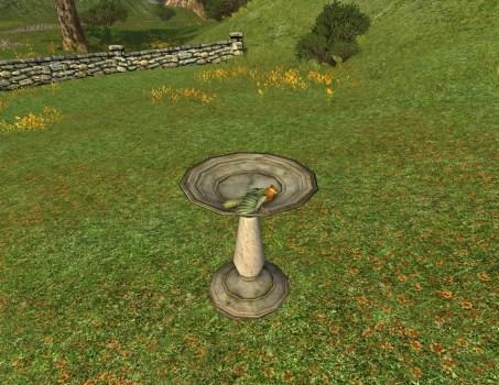 Vasque pour Oiseaux