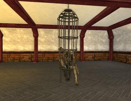 Vilaine Cage