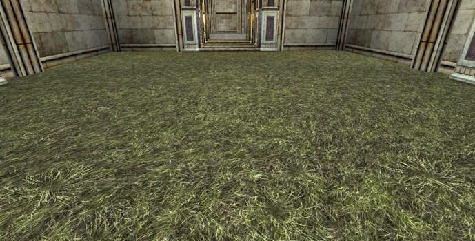 Sol d'herbes sèches