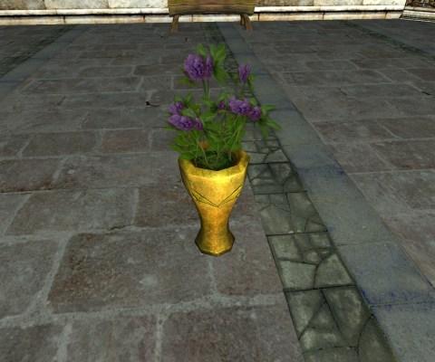 Vase de Trèfle Violette