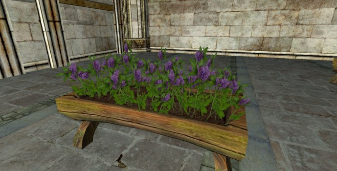 Jardinière Surélevée de Trèfle violette