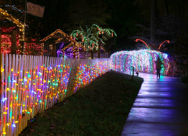 Image result for Garden of Lights at Brookside Gardens