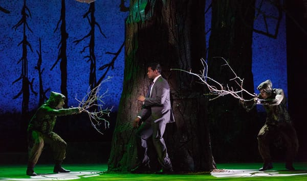 Sean Panikkar as Tamino in The Glimmerglass Festival's 2015 production of Mozart's The Magic Flute. (Photo: Karli Cadel)