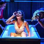 Rosalind Lacy's Top 12 shows of 2015