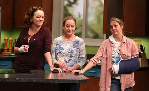 (l-r) Emily Townley, Amy McWilliams), and Holly Twyford in Olney Theatre Center's production of BAD DOG. (Photo: Nicholas Griner)