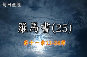 Read more about the article 羅馬書(25)11:11-24