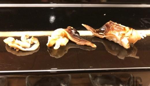 ホテル日航金沢の弁慶のカウンターでお寿司をいただく。二種類の蒸し寿司に悶絶♪