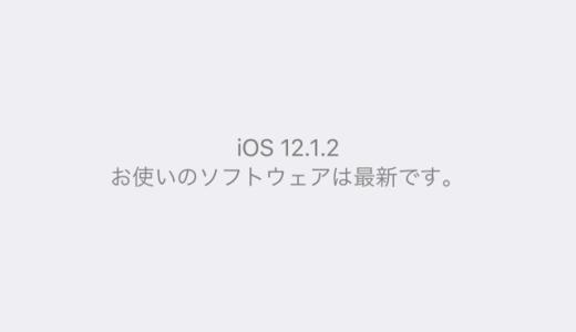 2018年iOSリリース情報まとめ。iOS11.2.2からiOS12.1.2(16C104)まで12回iOSが提供されました