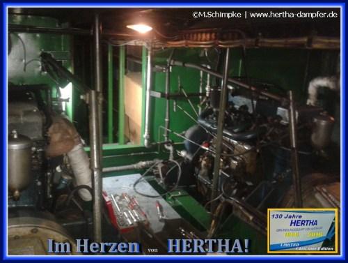 Im Herzen der Legende HERTHA
