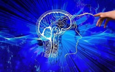 Ostéopathie – Psychologie : Comment libérer ses émotions ? De l'EMDR aux Mouvements Corporels