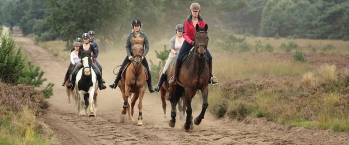 vakantie te paard