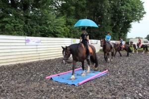 Ponykampvakantie