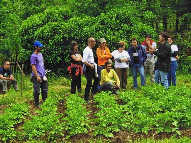 Ökologischer Landbau …  oder die Zukunft erfinden