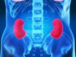 Chronisches Nierenversagen und natürliche Behandlung