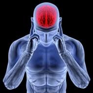 5 Tipps, wie Sie Ihr Gehirn in Form halten