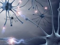 Gefühle und Gesundheit des Nervensystems