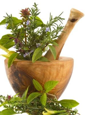 Ihre Küche und die Verwendung von pflanzlichen Heilmittel