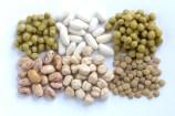 Angemessener Konsum von tierischem Eiweiß und Gemüse