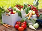 Tipps für eine vegetarische Ernährung