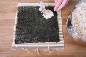 Arten von essbaren Algen