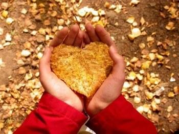 Die Balance zwischen Geben und Empfangen Zuneigung