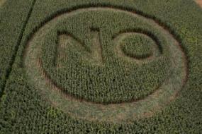 Kampagne gegen gentechnisch verändertes Saatgut